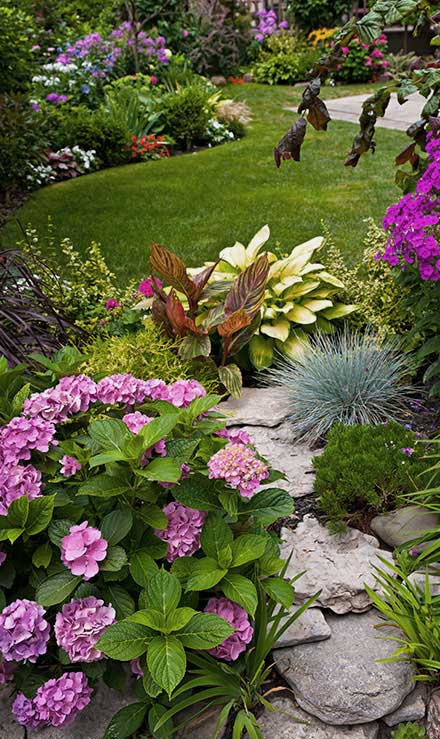 Empire Yard Services Landscaping