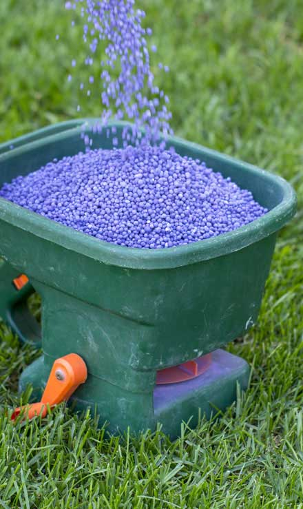 Empire Yard Services  Lawn Fertilization
