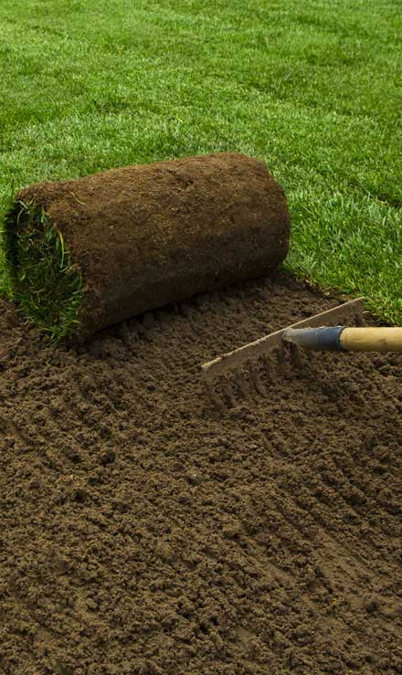 Empire Yard Services Sod Installation