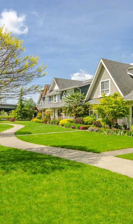 Empire Yard Services Residential Lawn Care