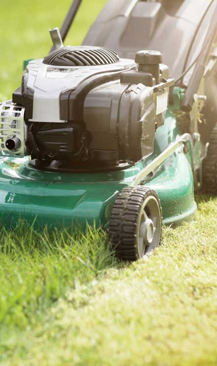 Empire Yard Services Residential Lawn Mowing
